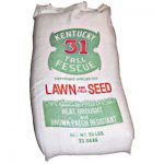 kentucky-31-tall-fescue-lawn-and-field-seed
