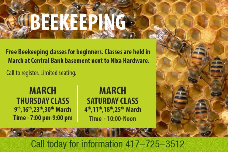 bee-day-classes